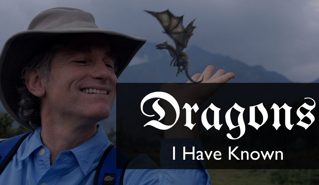 Dragons I Have Known