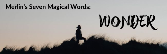 Merlin's Seven Magical Words: Wonder